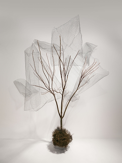 Modern Matter | Tree Installation | Nick Bowers | Still Life | Jo Ayling